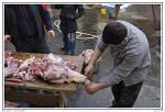 Pied de cochon